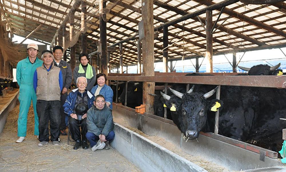 安心・安全な特選和牛 菅野牧場の黒毛和牛